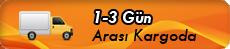 1-3 Gün Arası Kargoda
